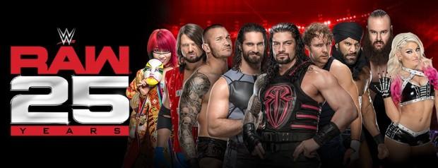 WWE-910X350-387875bdb9