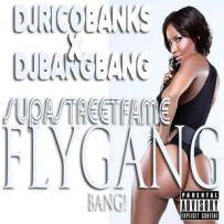 Various_Artists_Supa_Street_Fame_Fly_Gang_Bang-front